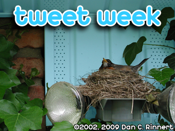 Tweet Week: Security