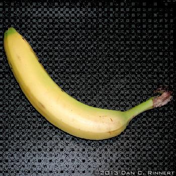Banana 1678