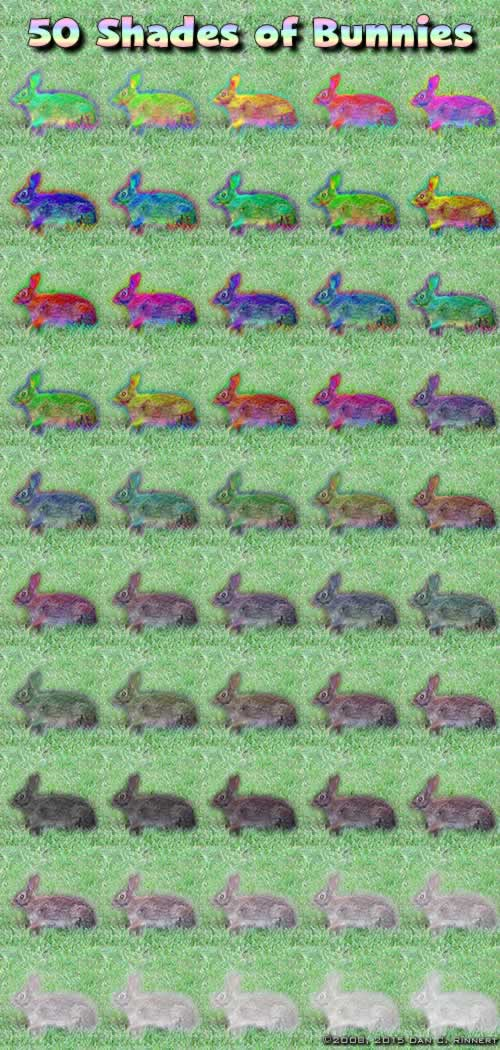 rabbit-0045-201502-small